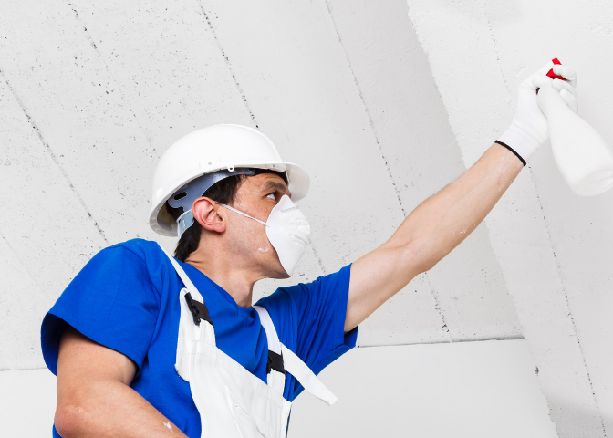 Mold Removal Marketing